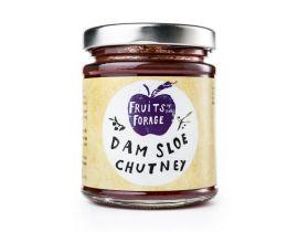 Fruits of the Forage Dam Sloe Chutney